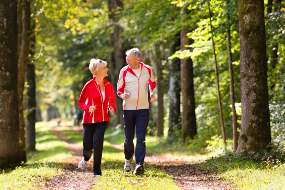 get-seniors-in-good-shape-with-our-wellness-coordinators